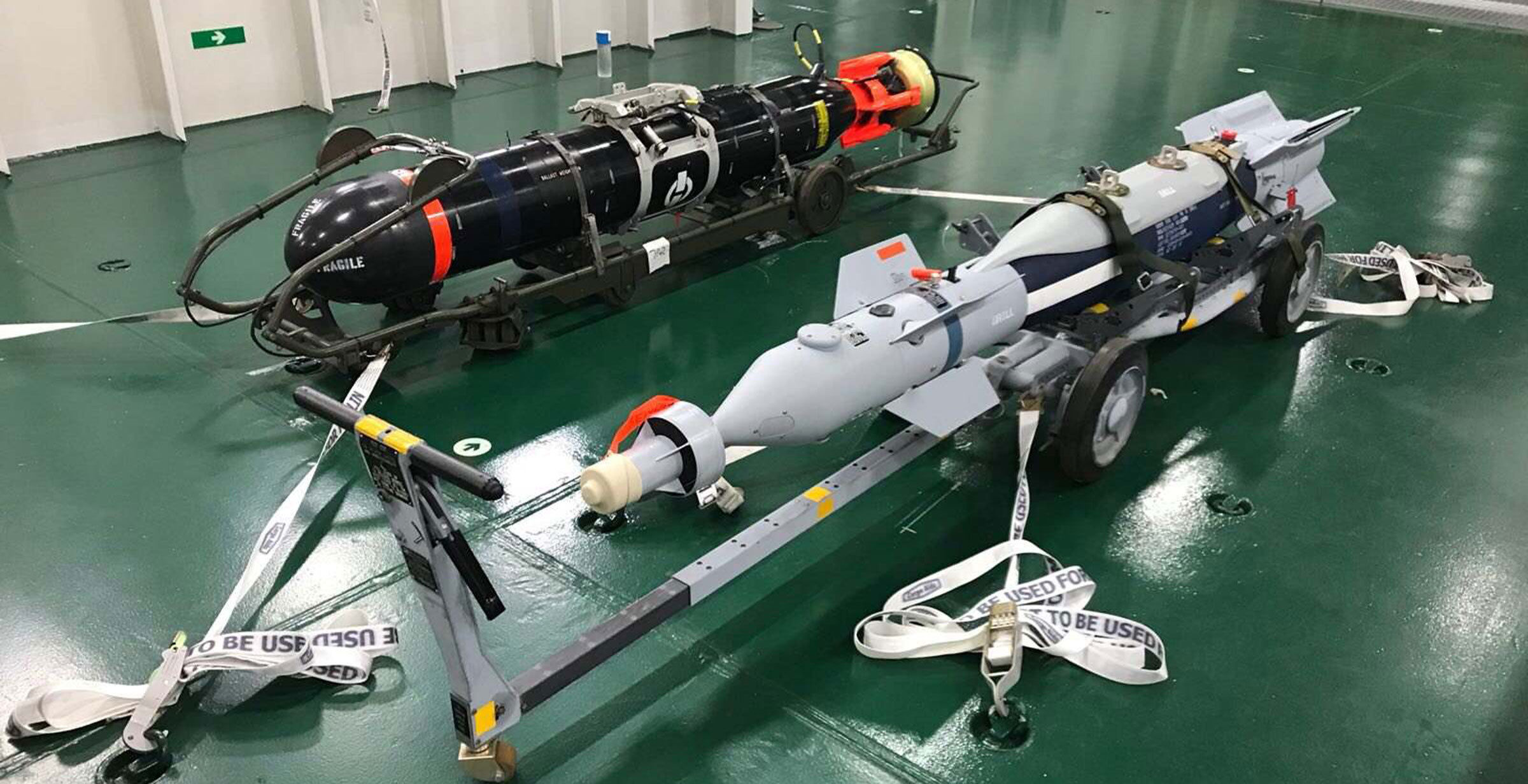 Sting Ray Torpedo and Paveway IV laser-guided bomb (LGB)